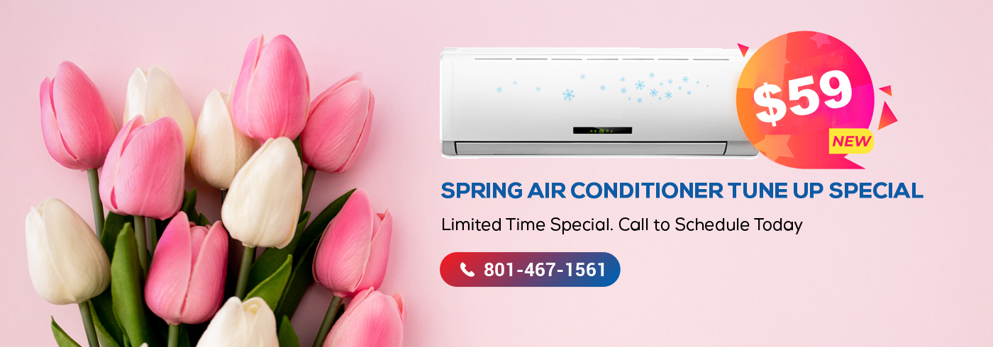 Lee's Spring AC Tune Up Special